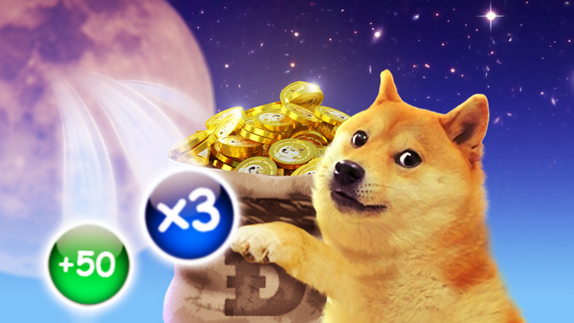 Doge Video Game